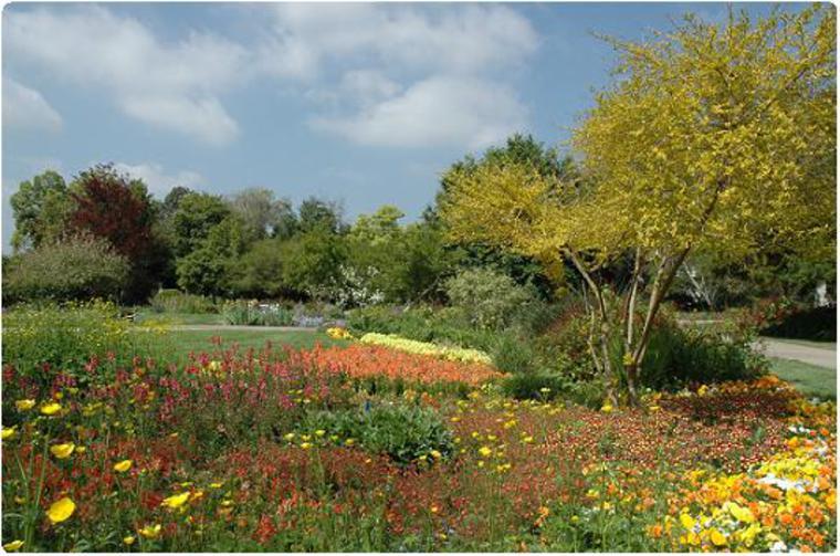 The Huntington Botanical Gardens